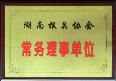 湖南报关协会常务理事单位